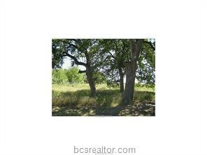 Lot 323 Scarborough Drive, Iola, TX 77861 (MLS #18013727) :: The Lester Group