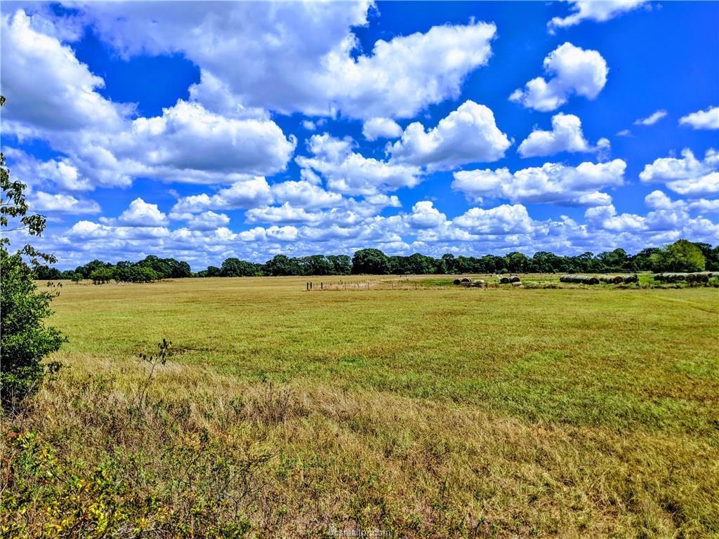 Tract 3 1940 Farm To Market Road - Photo 1