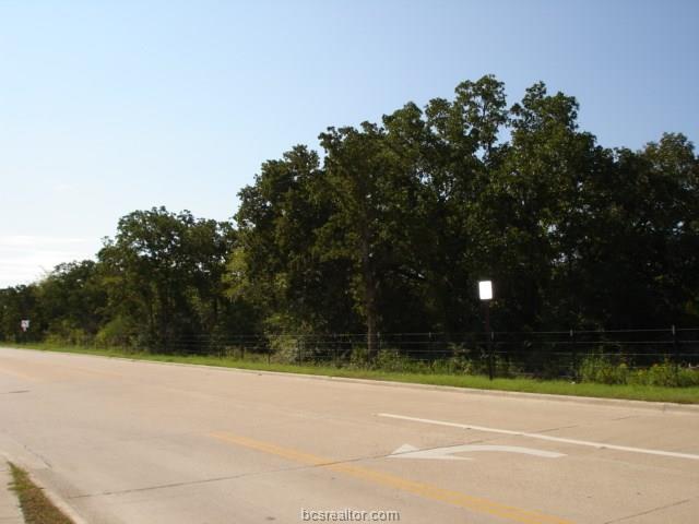 - Barron Cut-Off Road, College Station, TX 77845 (MLS #18016084) :: Cherry Ruffino Team