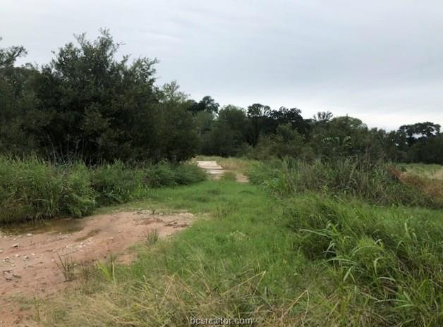 2201 Emerald Parkway, College Station, TX 77845 (MLS #18016872) :: Platinum Real Estate Group