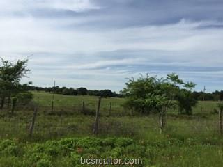 Lot 3 Becktold County Road - Photo 1