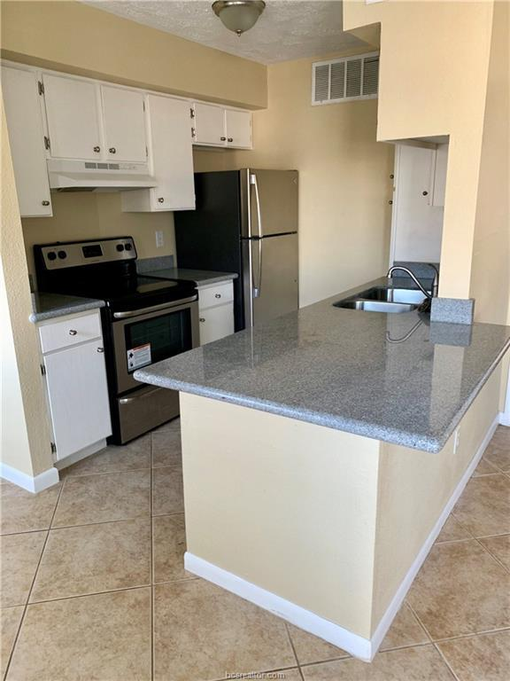4441 Old College #1102 Road #1102, Bryan, TX 77801 (MLS #18019035) :: The Shellenberger Team