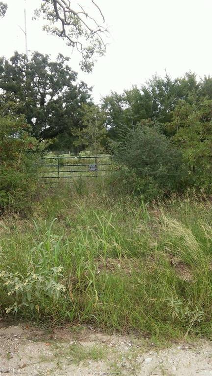 000 Grant Prairie Road, Franklin, TX 77856 (MLS #19000966) :: Treehouse Real Estate