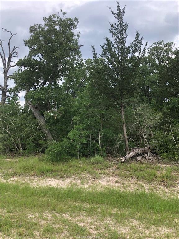 19376 Moonlit Hollow Loop Road, Millican, TX 77845 (MLS #19007291) :: Treehouse Real Estate