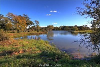 TBD Cr 415 County Road, Navasota, TX 77868 (MLS #19007933) :: The Shellenberger Team