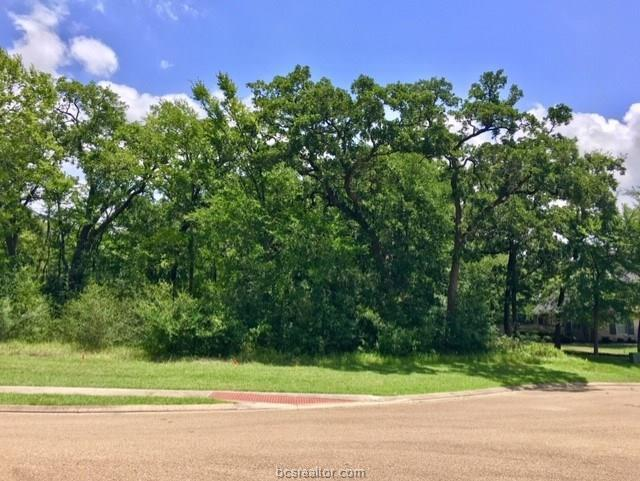 3221 Elm Creek Court, Bryan, TX 77807 (MLS #19010182) :: Treehouse Real Estate
