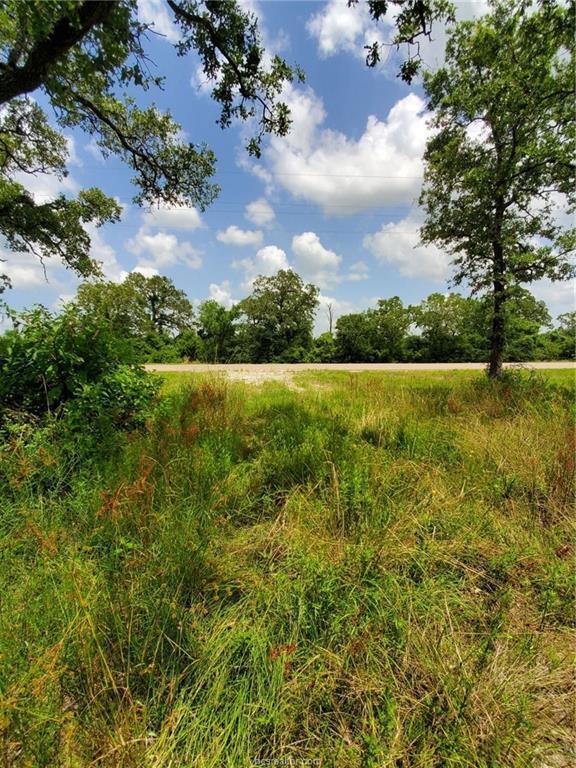 18011 Hwy 90, Bedias, TX 77831 (MLS #19010290) :: Treehouse Real Estate