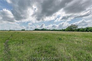 0000 Cr 259, Cameron, TX 76520 (MLS #19011083) :: Chapman Properties Group