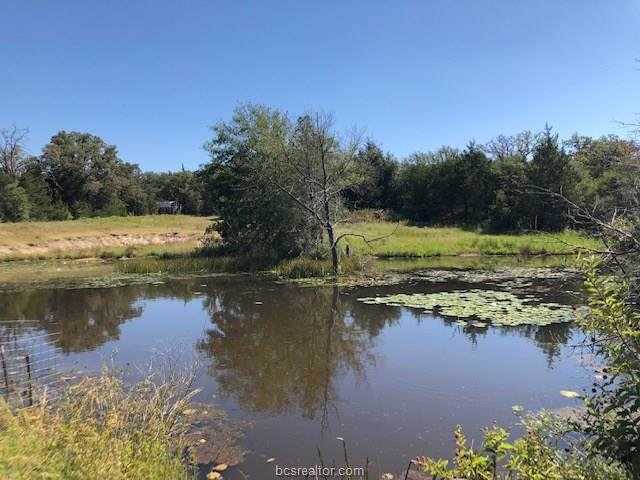 0000 County Road 346, Milano, TX 76556 (MLS #19012769) :: Treehouse Real Estate