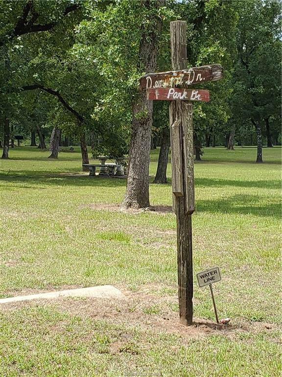 00 Armadillo Drive, Hempstead, TX 77445 (MLS #19014252) :: RE/MAX 20/20