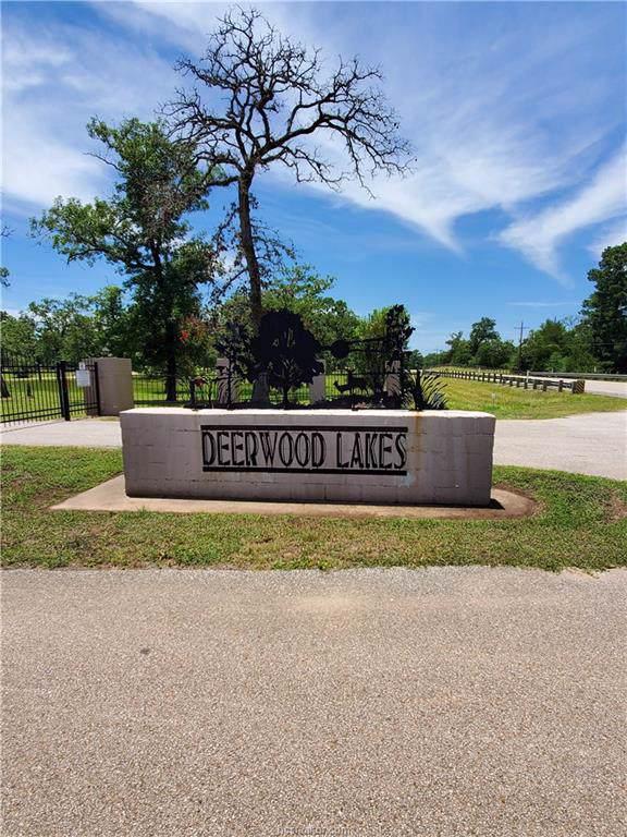 00 Fern Drive, Hempstead, TX 77445 (MLS #19016683) :: Treehouse Real Estate