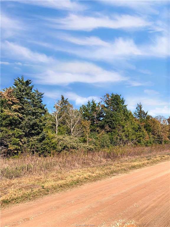 10.67 acres Emu Lane, North Zulch, TX 77872 (MLS #19017090) :: BCS Dream Homes