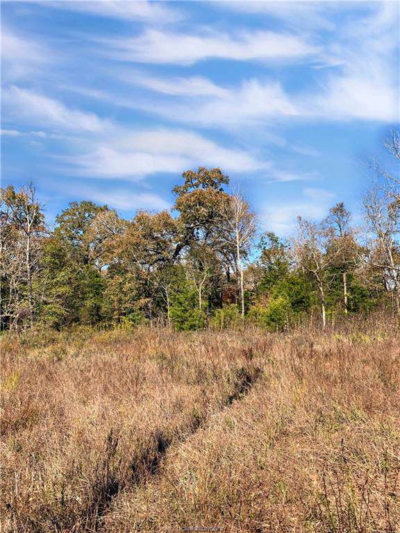 10.13 acres Emu Lane, North Zulch, TX 77872 (MLS #19017092) :: Treehouse Real Estate