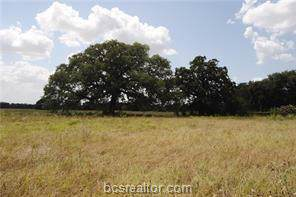 5392 Stousland Road, College Station, TX 77845 (MLS #19018661) :: Chapman Properties Group