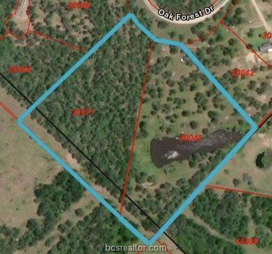 TBD Oak Forest Dr, Somerville, TX 77879 (MLS #20004321) :: Treehouse Real Estate