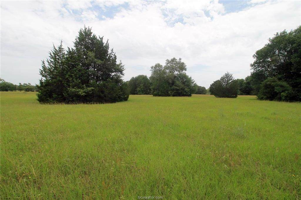 Tract A County Road 118 - Photo 1