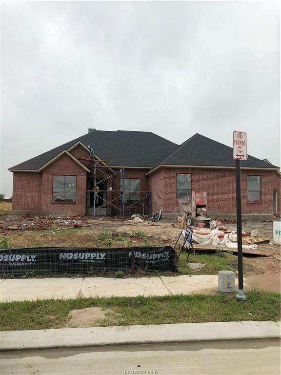4808 Crystal Ridge Court, College Station, TX 77845 (MLS #20012570) :: The Lester Group