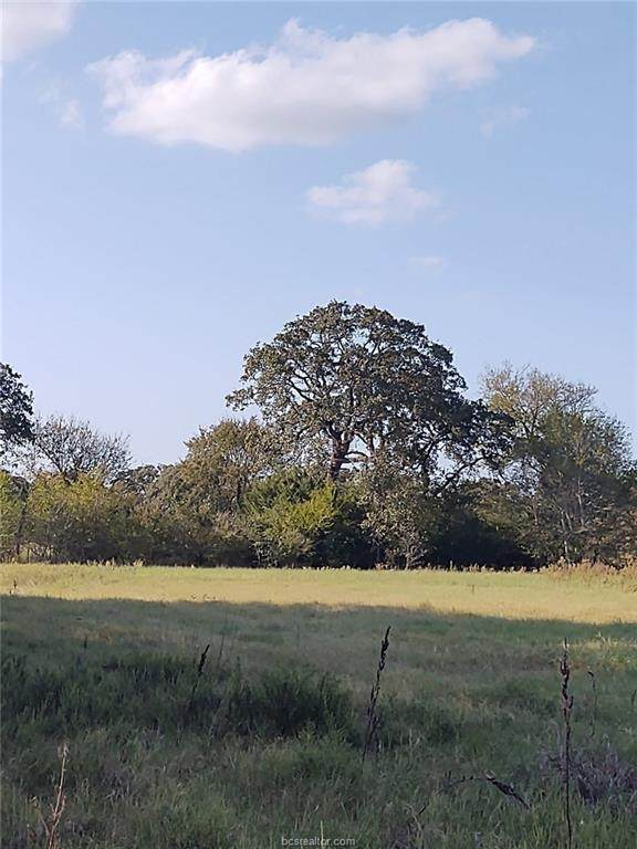 11195 Carter Lane, Bryan, TX 77808 (MLS #20016752) :: Cherry Ruffino Team