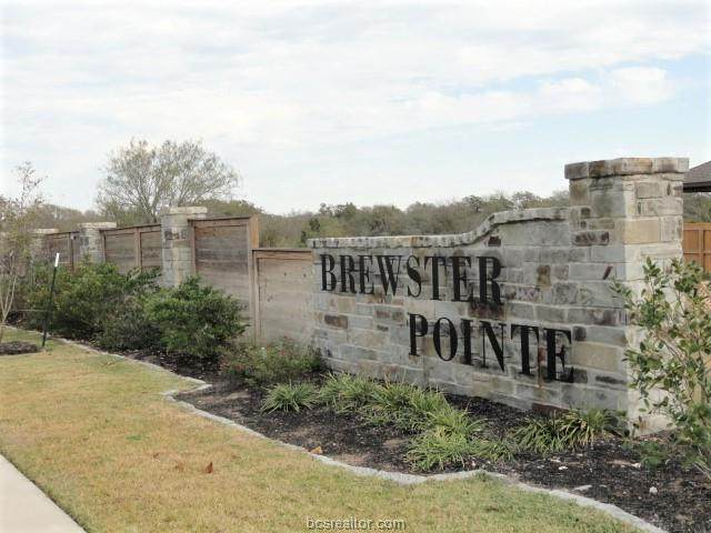 4004 Heru, College Station, TX 77845 (MLS #20018119) :: The Lester Group