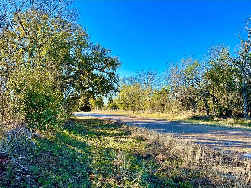 (+/-17.5 ac) TBD Sunnyside Rd - Photo 1