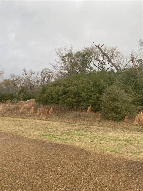 0000 Hampton Court, Iola, TX 77861 (#21000772) :: First Texas Brokerage Company