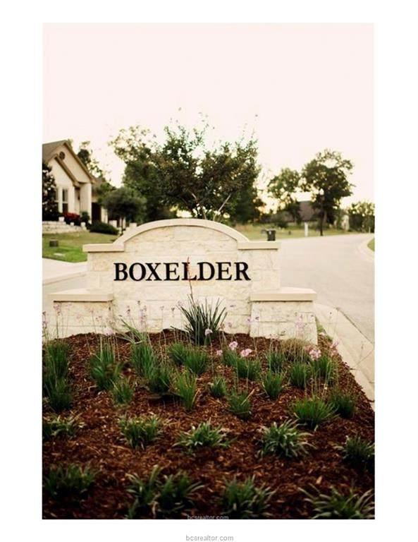 2929 Boxelder Drive - Photo 1