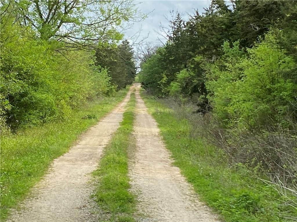 14547 Batson Loop - Photo 1