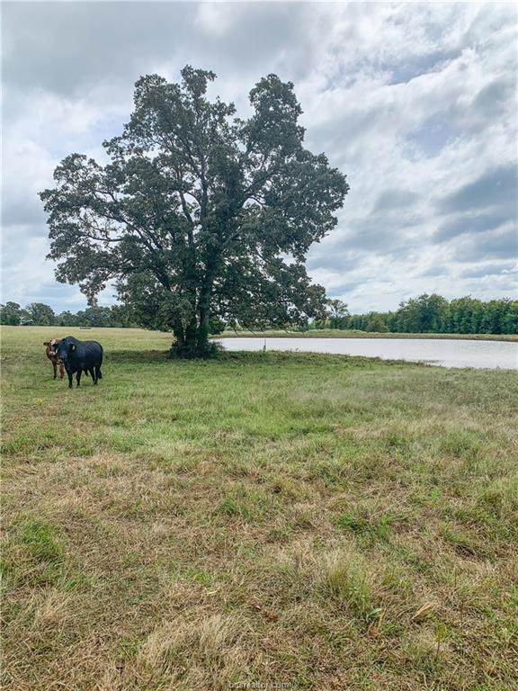 TBD Fm 39 Farm To Market Road, Normangee, TX 77871 (#21004799) :: First Texas Brokerage Company
