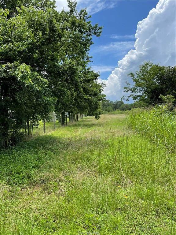 16616 County Road 438 - Photo 1