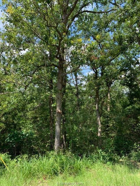 164 Hickory Ridge Drive - Photo 1