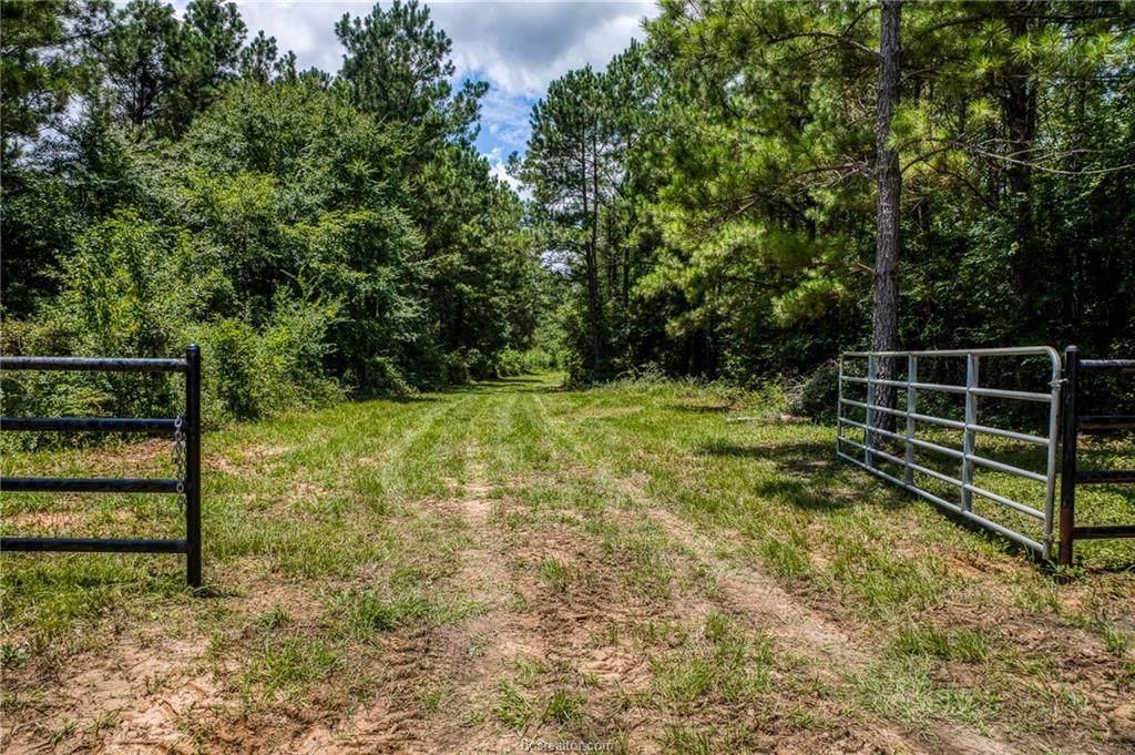 TBD County Road 448 - Photo 1