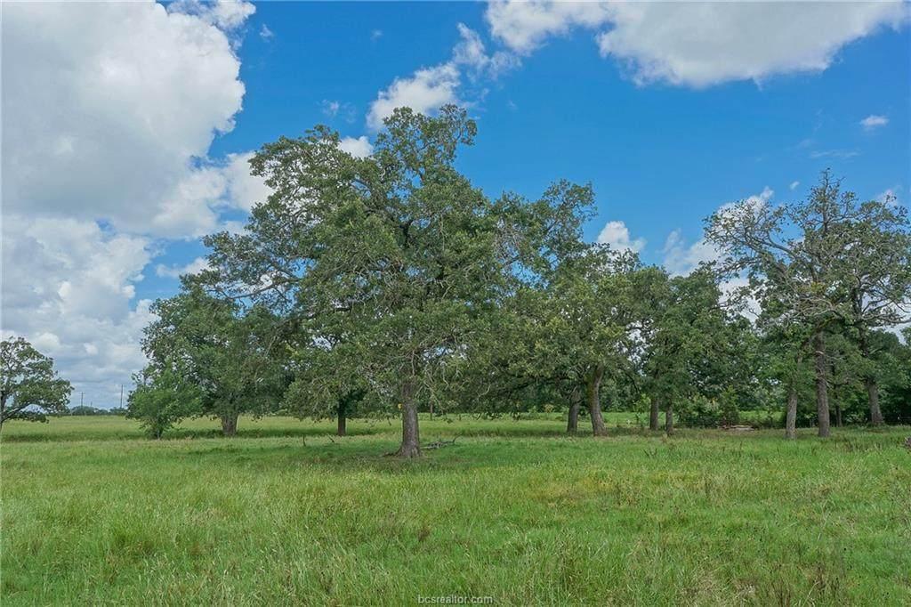 14.75 Acres Highway 21 - Photo 1