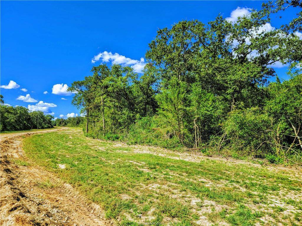 TBD - Lot 16 Sawmill Road - Photo 1