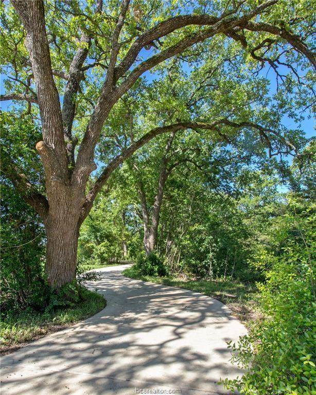 1779 Blanco Bend, College Station, TX 77845 (MLS #21012919) :: RE/MAX 20/20