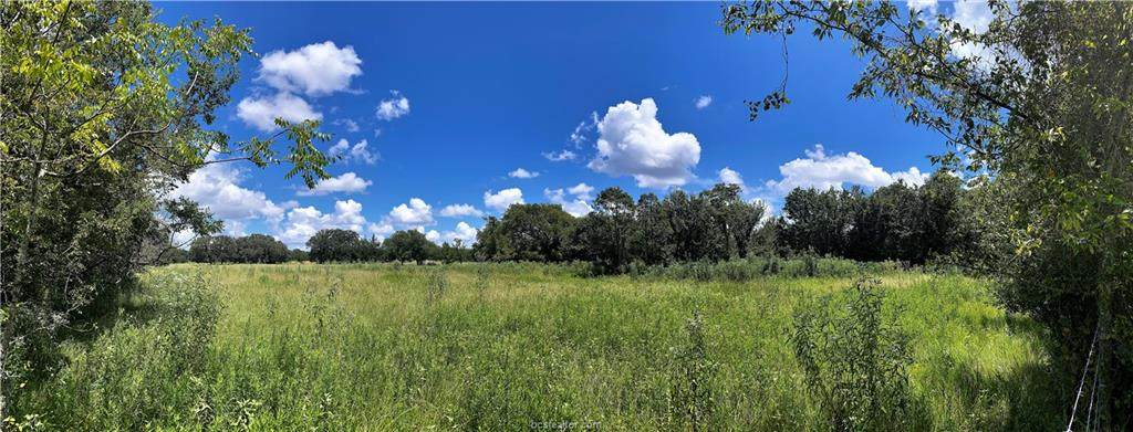Lot 19 TBD Old Hickory Grove Rd Farm To Market Road - Photo 1