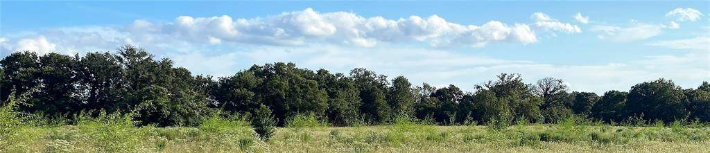 Lot 20 TBD Old Hickory Grove Rd Farm To Market Road - Photo 1