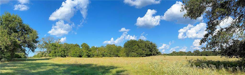 Lot 22 TBD Old Hickory Grove Rd County Road - Photo 1