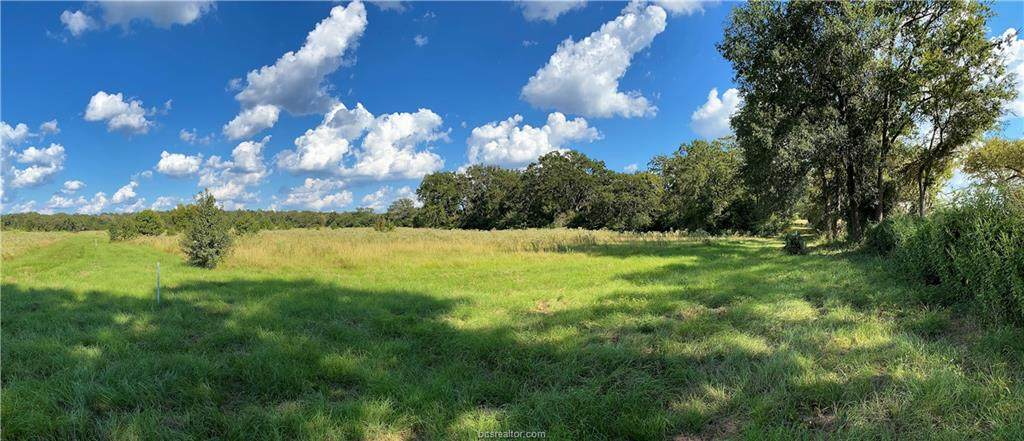 Lot 24 TBD Old Hickory Grove Rd County Road - Photo 1