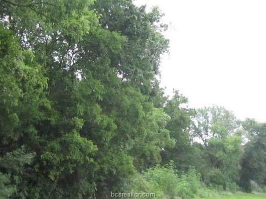 Lot 5 Blk 6 Tbd, Calvert, TX 77837 (MLS #21013132) :: BCS Dream Homes