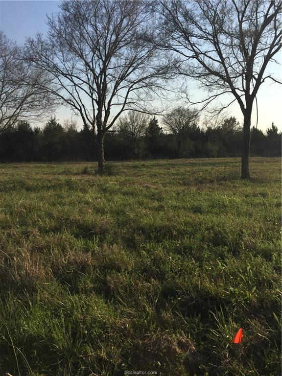 2.50 +/- ACRES Fm 39, Iola, TX 77861 (MLS #18005084) :: Amber Dawn Cox Realty Group