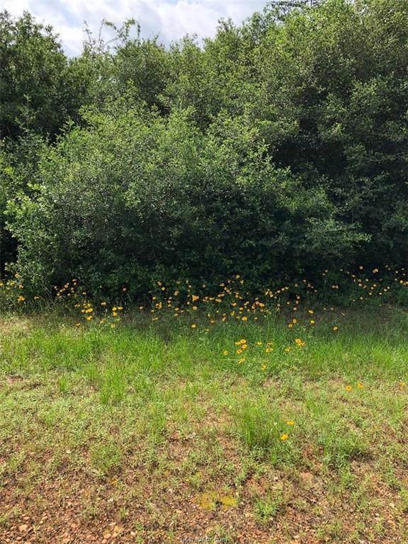 0 Fairway Circle, Hilltop Lakes, TX 77871 (MLS #19008006) :: BCS Dream Homes