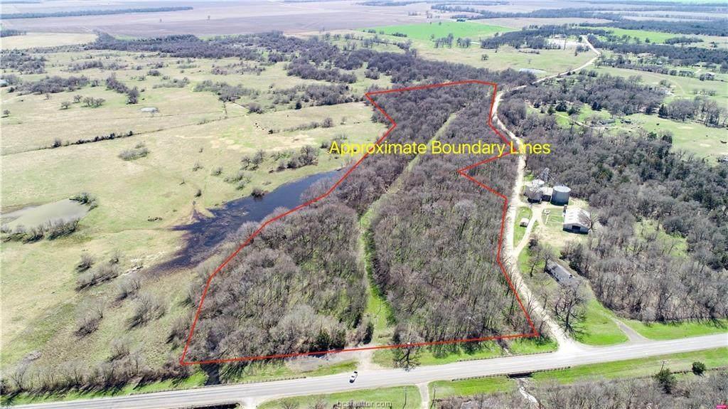 (+/-20 acres) TBD 485 Farm To Market Road - Photo 1