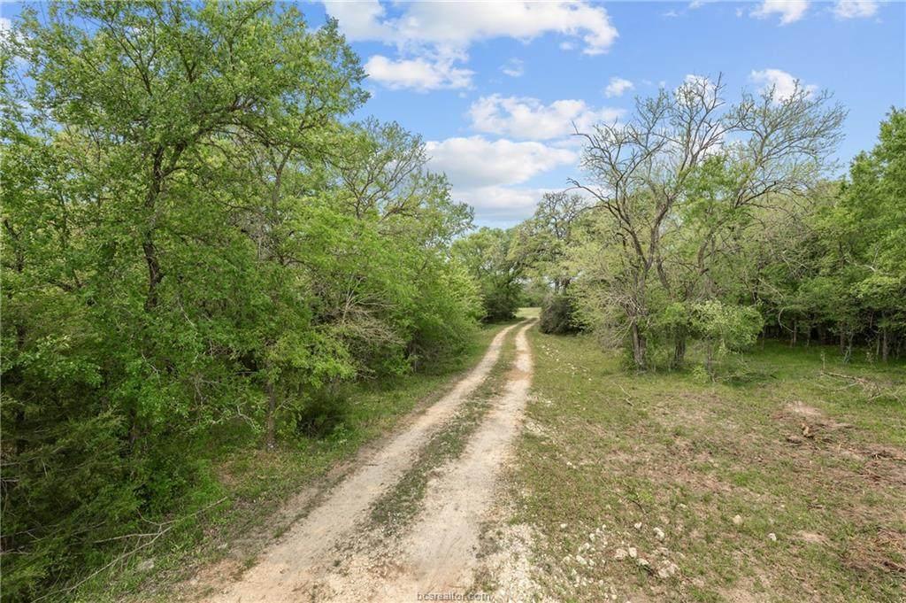 134.64 Acres County Rd 180 - Photo 1