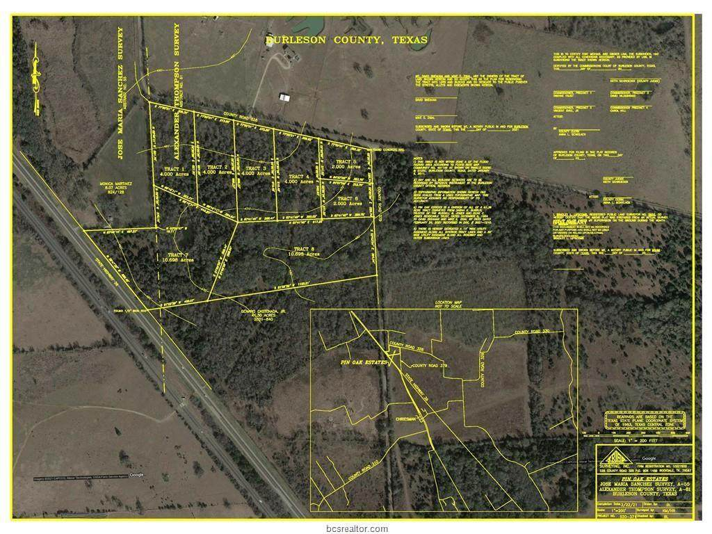 Tract 8 (+/- 10.698  County Road 379 - Photo 1