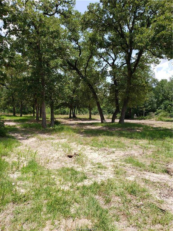 17626 Private Road 4016, Snook, TX 77878 (MLS #20005568) :: The Lester Group