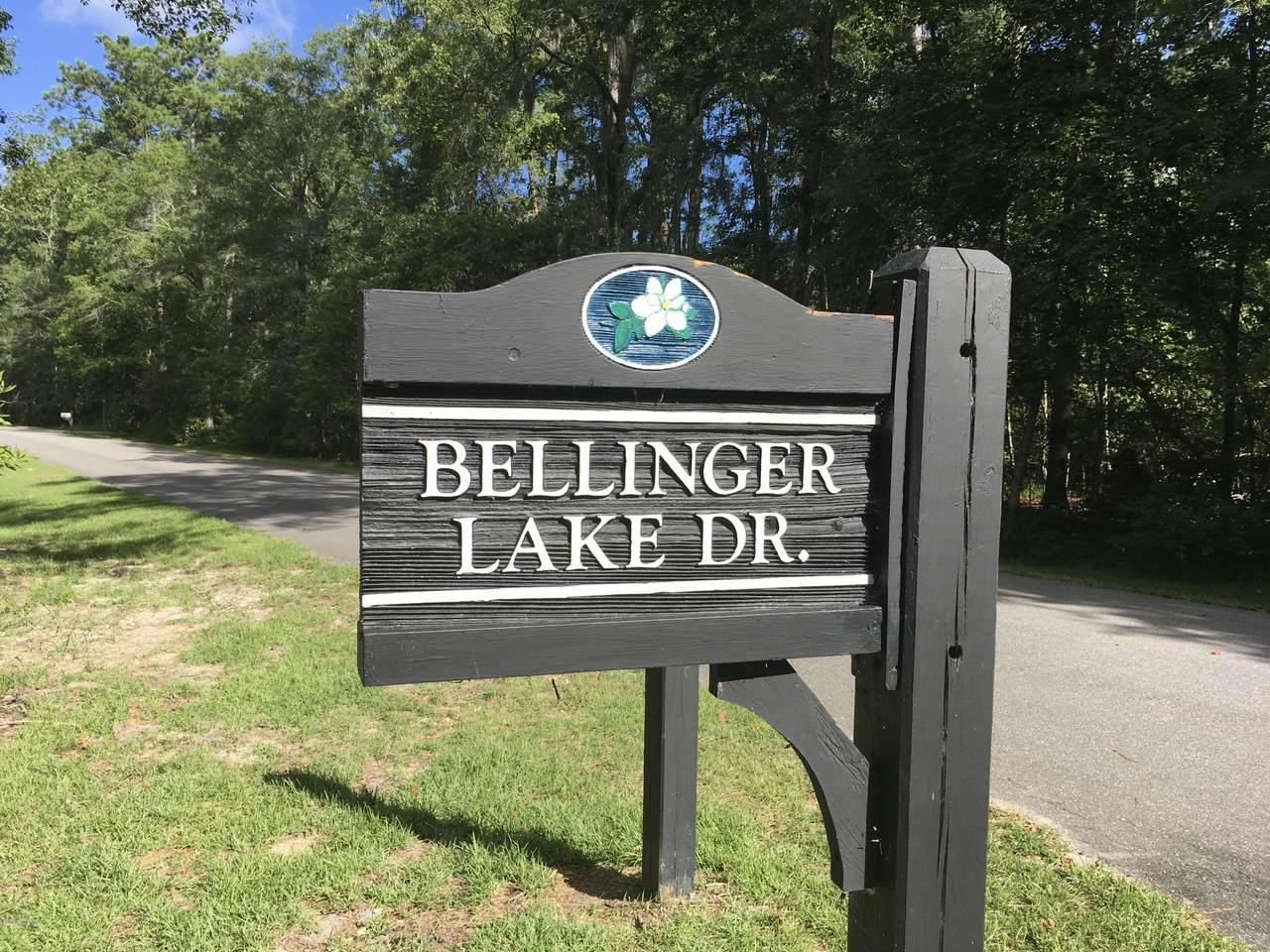 10 Bellinger Lake Drive - Photo 1