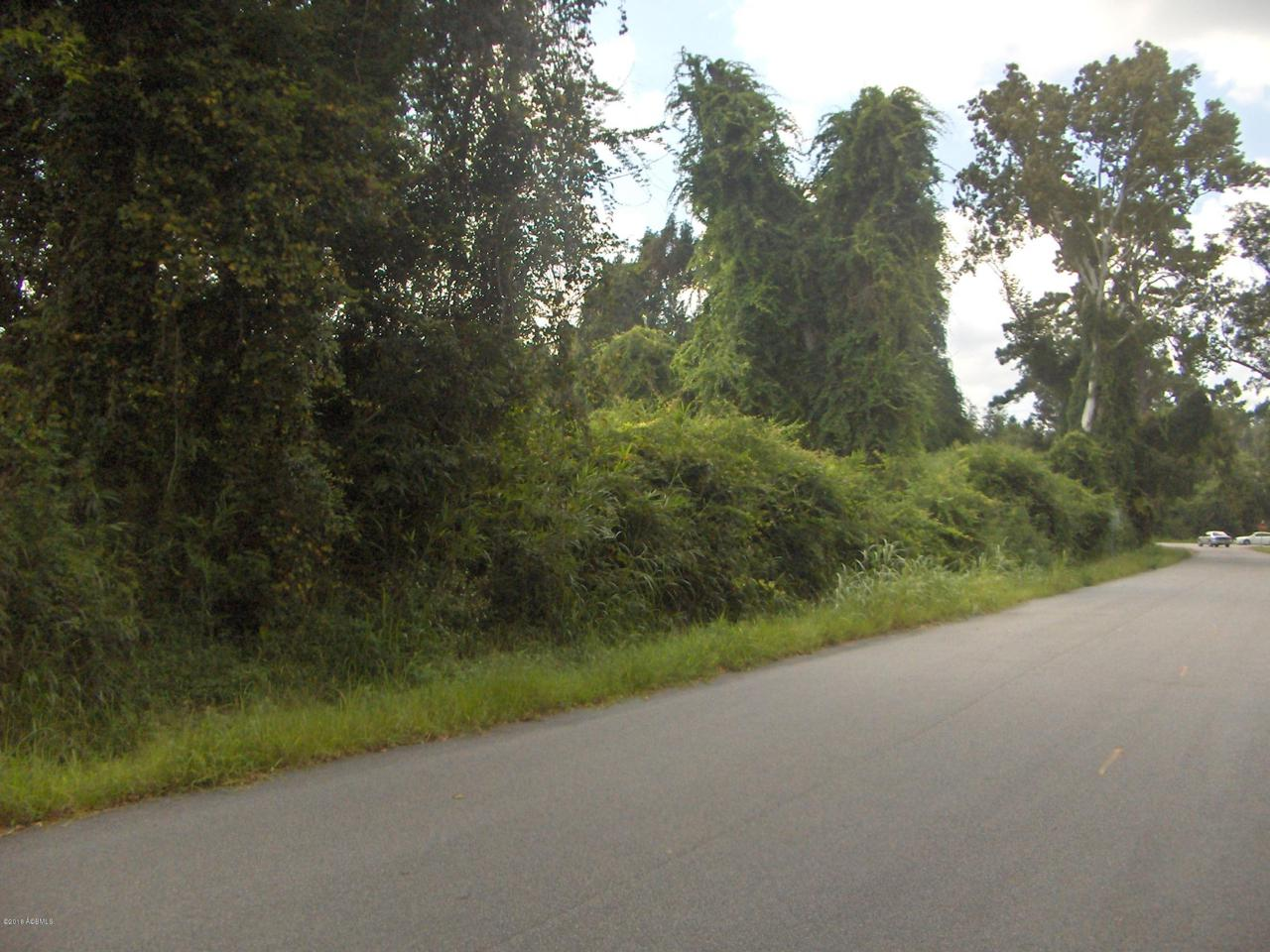 894 Sea Island Parkway - Photo 1
