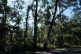 47 Bermuda Inlet Drive - Photo 4