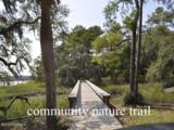 535 Distant Island Drive - Photo 12