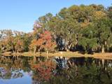 4 Long Pond Drive - Photo 12
